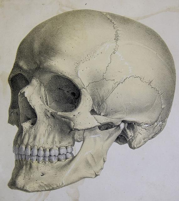 3D nyomtatás és arcátültetés