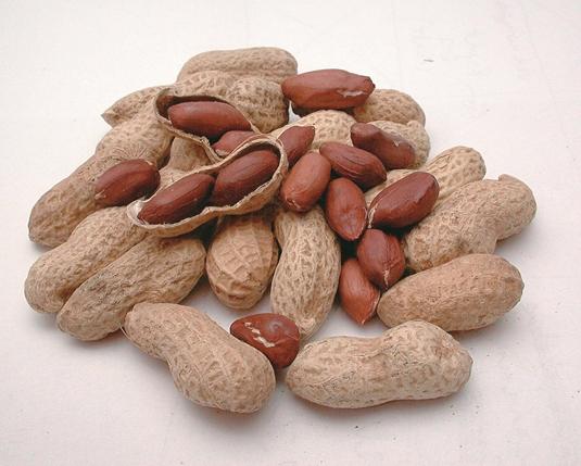 A földimogyoró-allergia kezelésének új lehetősége