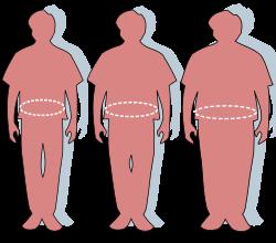 A felnőttek 60 százaléka túlsúlyos