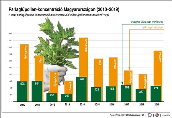 Parlagfűpollen-koncentráció Magyarországon (2010-2019