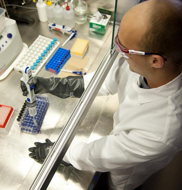 A malária kutatása közben felfedeztek egy rák gyógyítására is alkalmas szert