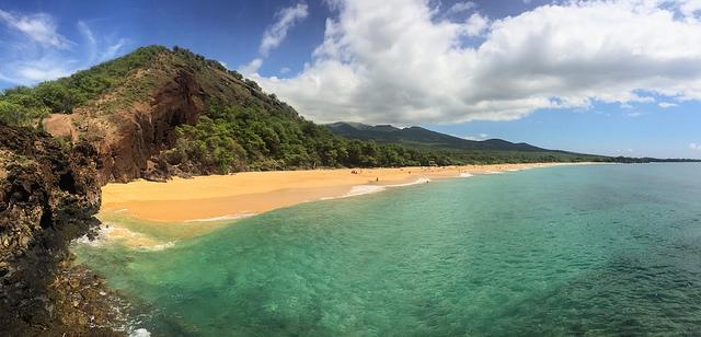 Hawaii legnagyobb szigetén szükségállapotot hirdettek a dengue-láz miatt