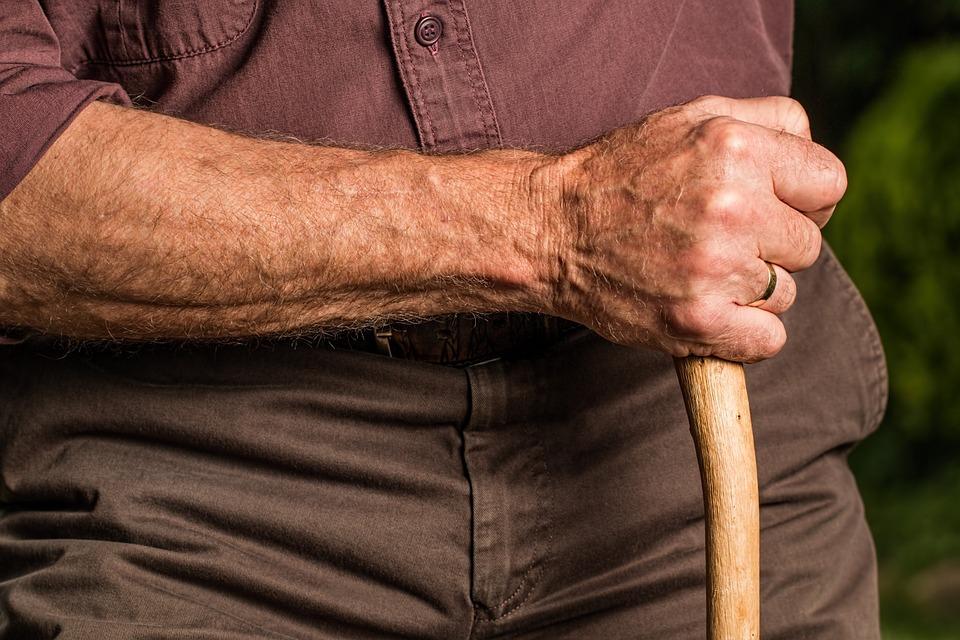 Hogyan veszi fel agyunk a harcot az öregedés ellen?