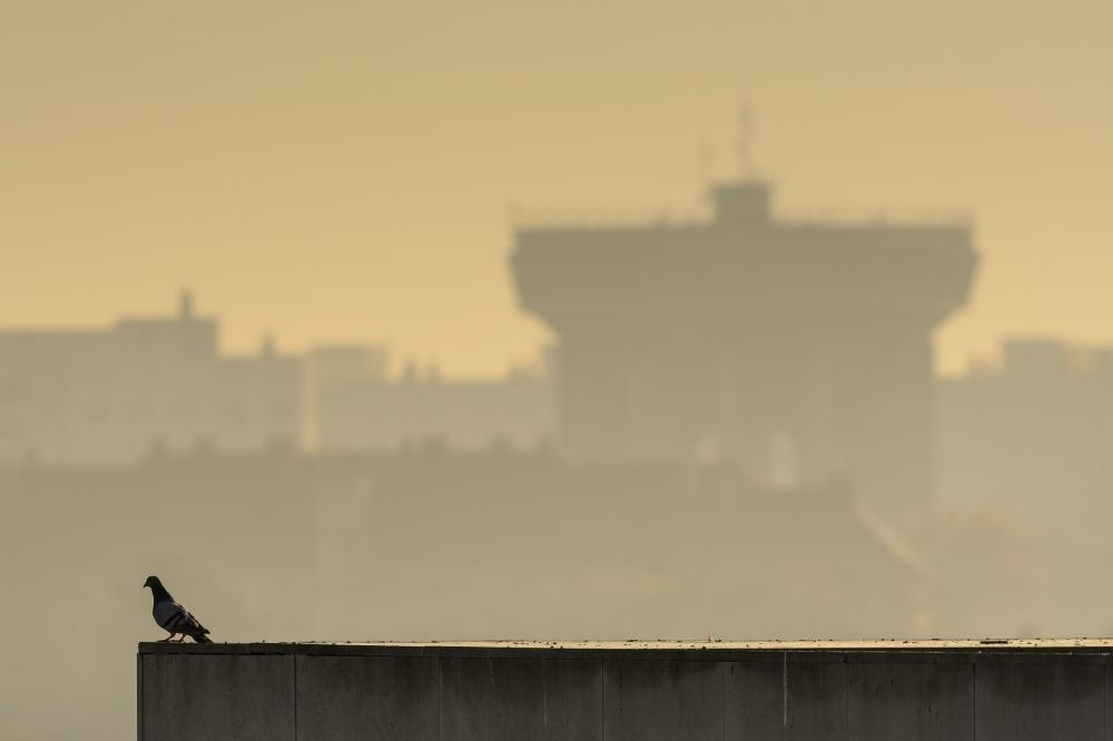 November 4-én már tizennégy magyarországi városban rossz a levegő
