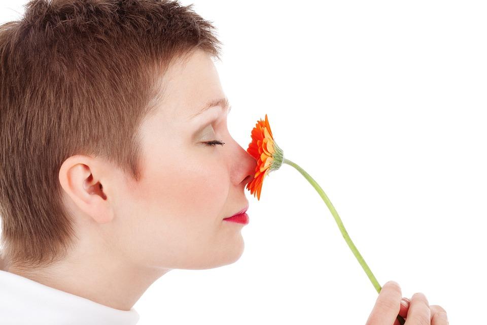 A szaglást befolyásolják a korábbi tapasztalatok és az illat ismerete