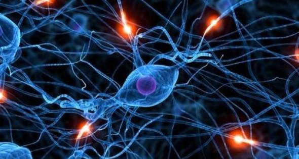Sclerosis multiplex világnap a Vajdahunyadvárban